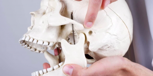 jaw joint surgery